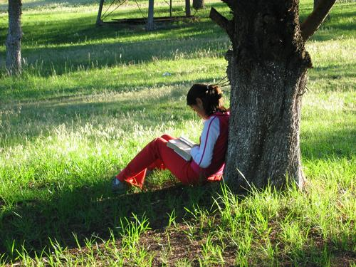 Time Human being Nature Girl Tree Calm Loneliness Meadow Child Book Reading Prayer God Deities Bible