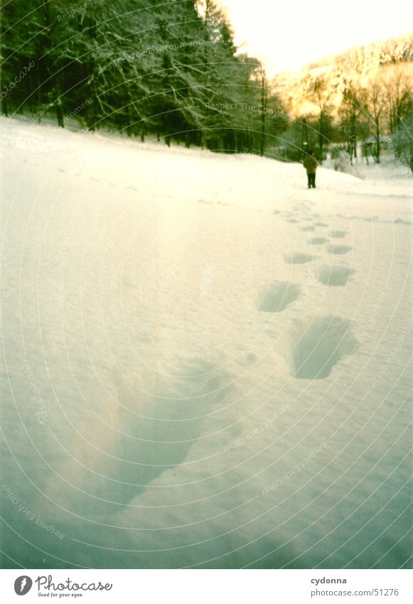 in deep snow Winter Cold Footprint White Forest Thuringia Loneliness Calm Hiking Impression Human being Snow Ice Tracks Sun Landscape To go for a walk