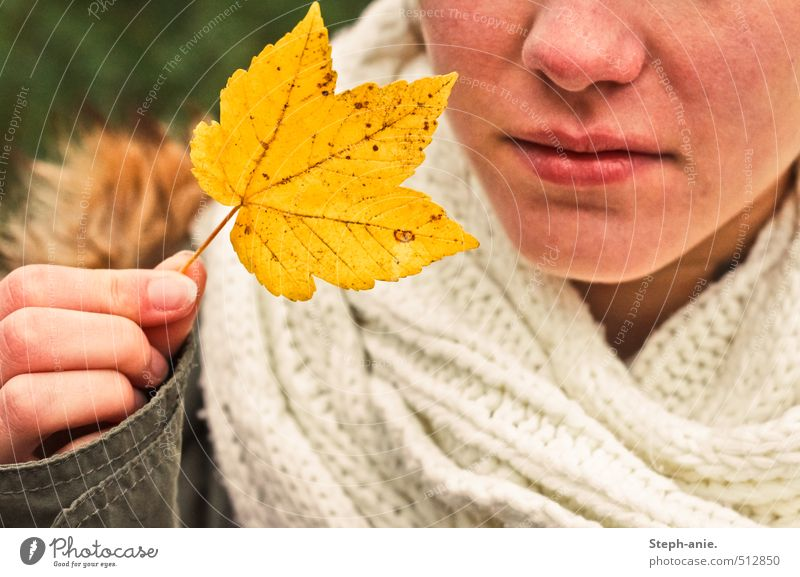 Hello autumn! Feminine Nose Mouth Hand 1 Human being Autumn Leaf Jacket Scarf To hold on Natural Yellow Moody Beginning Apocalyptic sentiment Transience Change