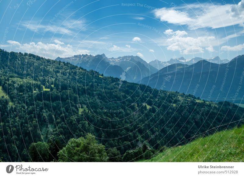 Alpine moments 1 Environment Nature Landscape Plant Sky Clouds Summer Beautiful weather Tree Grass Meadow Forest Alps Mountain Vorarlberg Austria Peak