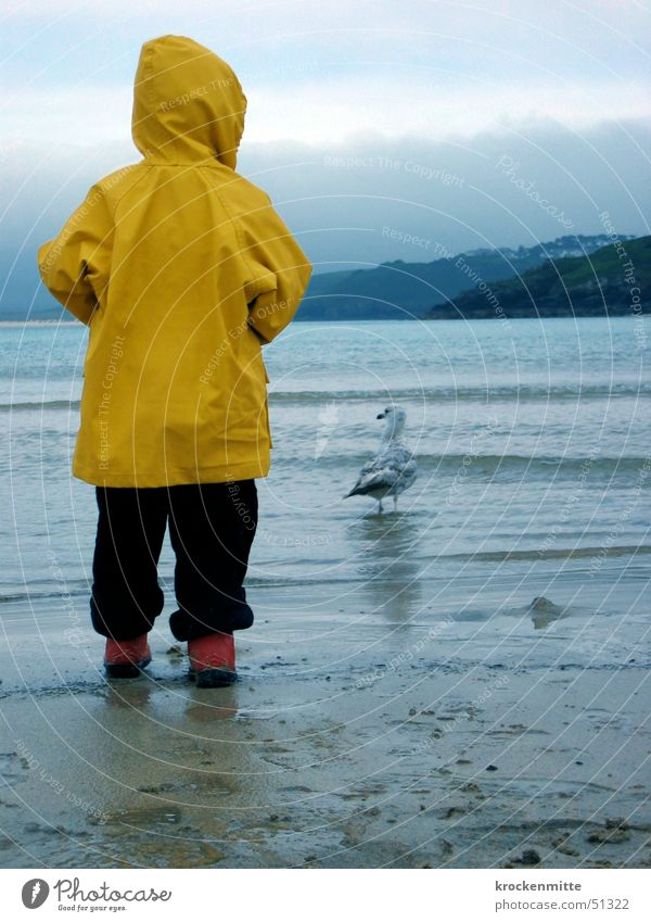 seagull Child Yellow Seagull Raincoat Boots Red Ocean England Beach Clouds Hooded (clothing) Water Sand sand tracks Observe Boy (child) Rear view boy