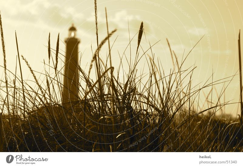 Lighthouse in the dunes of Skaagen Beach dune Denmark skaage