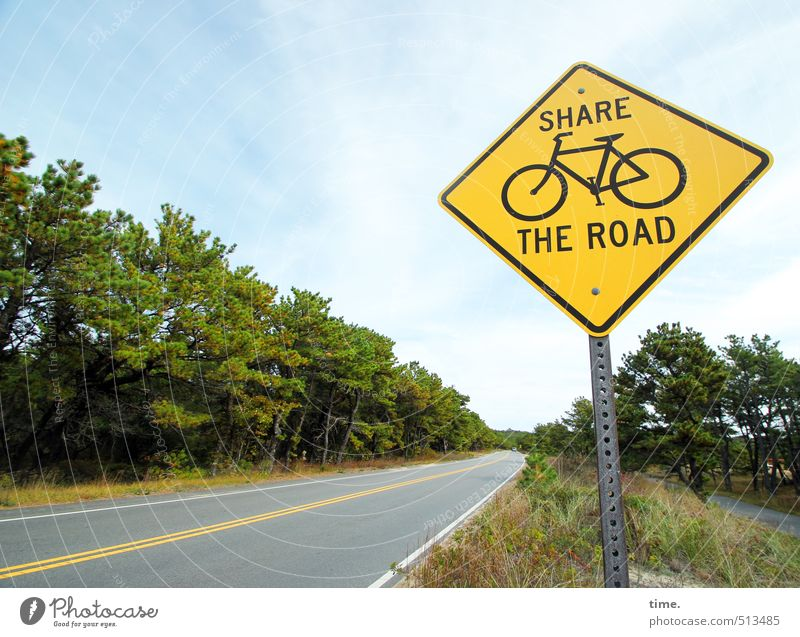 . Forest Roadside Transport Traffic infrastructure Passenger traffic Motoring Cycling Street Lanes & trails Road sign Hospitality Solidarity Responsibility