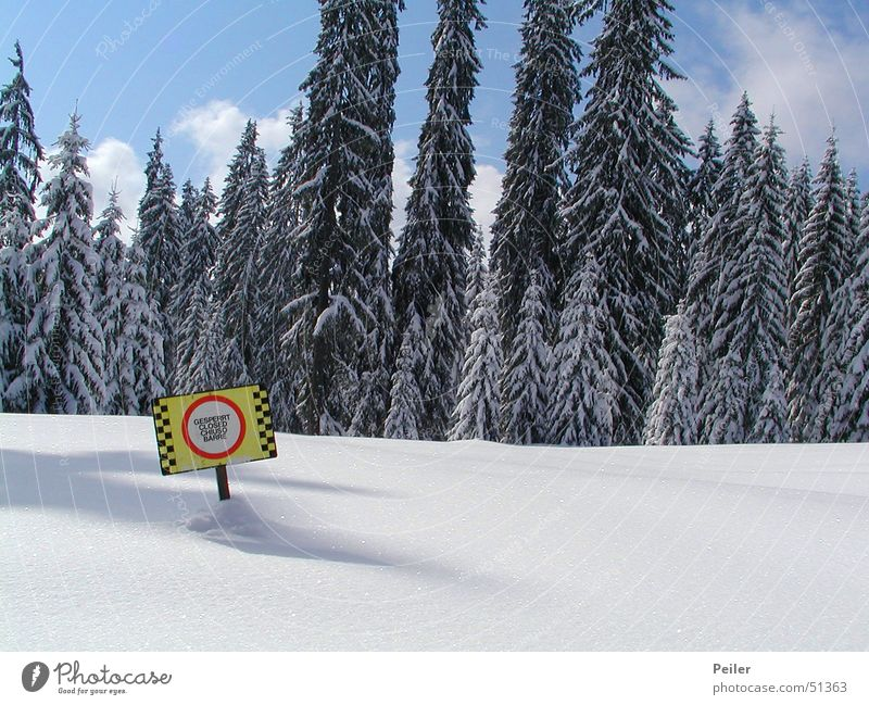 Closed ski slope II Barred Winter Forest Fir tree Snowscape Avalanche Ski run Deep snow Alpine Light blue Cold Ice crystal Yellow Red Signs and labeling Shadow