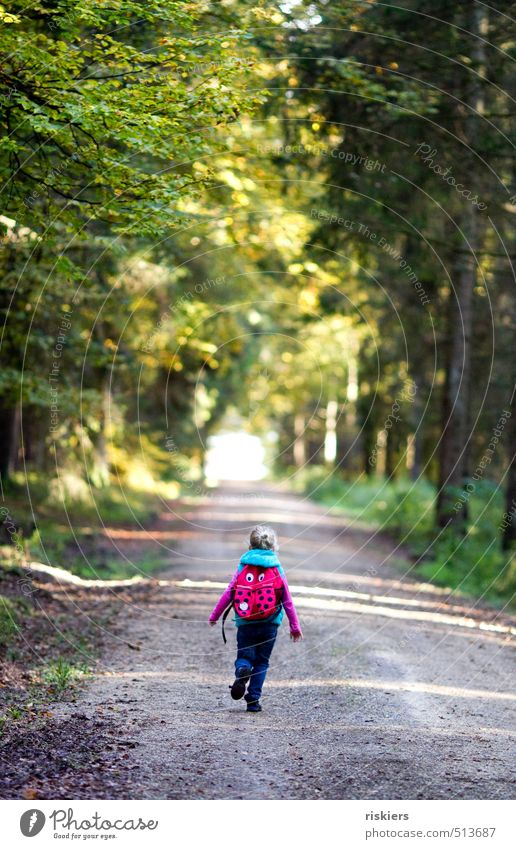 wanderlust Human being Feminine Child Girl Infancy 1 3 - 8 years Environment Nature Landscape Autumn Beautiful weather Forest Discover Running Hiking Free