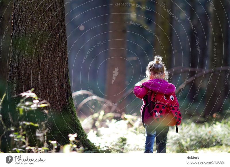 Human being Child Nature Tree Relaxation Landscape Calm Girl Forest Environment Feminine Autumn Natural Going Power Infancy