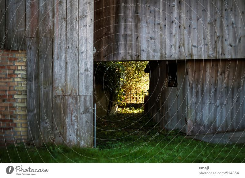 passage Environment Nature House (Residential Structure) Hut Wall (barrier) Wall (building) Facade Natural Green Wooden board Wooden wall Passage Tunnel