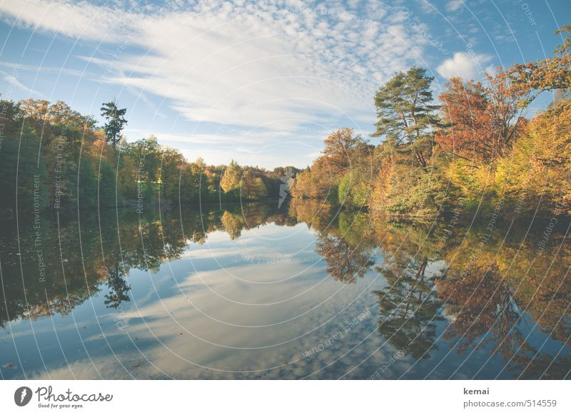 Sky Nature Beautiful Water Plant Tree Landscape Calm Clouds Forest Environment Warmth Autumn Lake Park Bushes