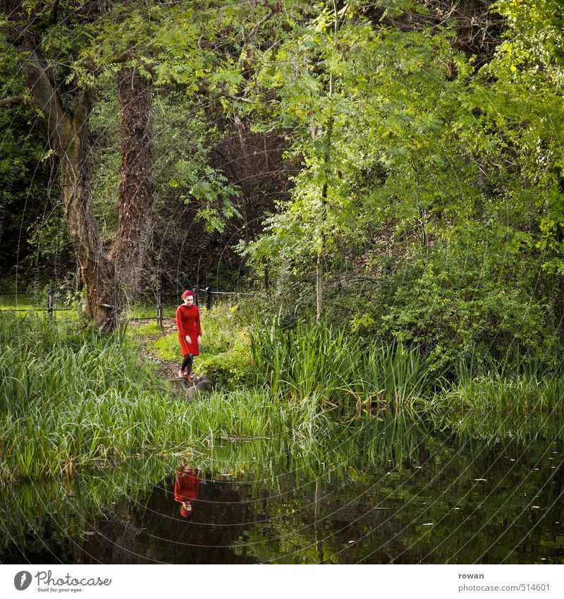 At the lake Human being Feminine Young woman Youth (Young adults) Woman Adults Environment Nature Landscape Lakeside Calm Loneliness Dress Red Reflection Tree