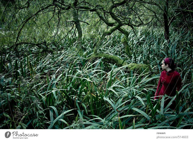 Human being Woman Tree Loneliness Adults Dark Feminine Sadness Dream Fear Bushes Dangerous Threat Dress Fear of death Creepy