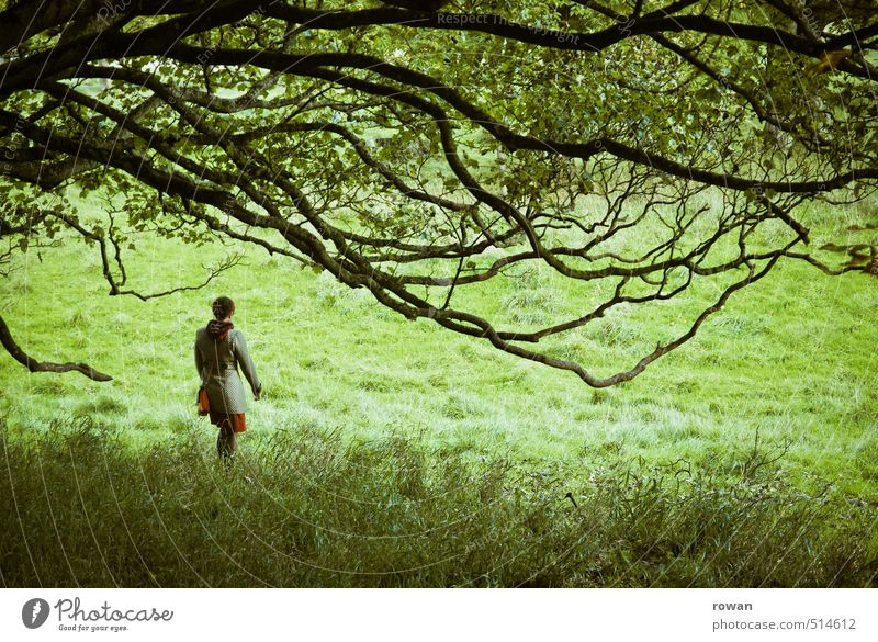 stroll Human being Feminine Woman Adults 1 Tree Discover To go for a walk Mystic Park Branch Green Dress Going Colour photo Exterior shot Copy Space bottom Day