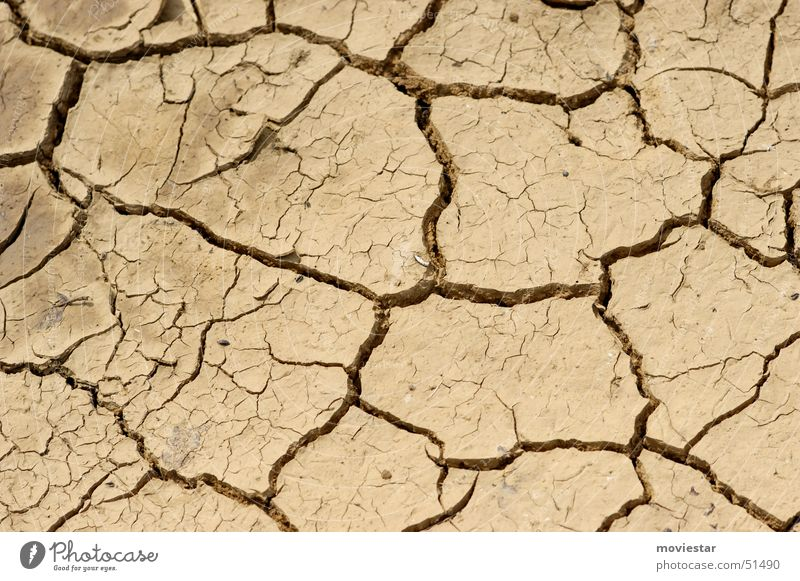 parched Dry Drought Loam Puddle Brown Light brown Floor covering Water Crack & Rip & Tear