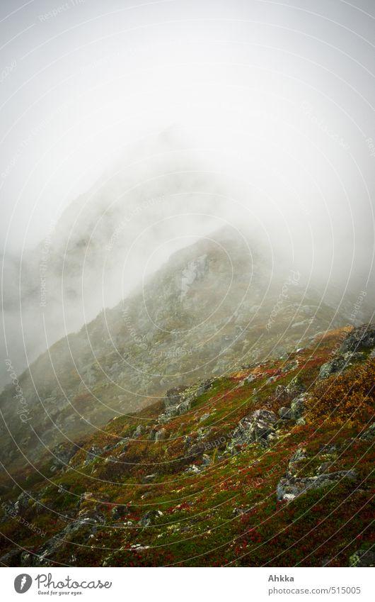smoke screen Overweight Wellness Meditation Adventure Far-off places Freedom Mountain Nature Landscape Autumn Climate Bad weather Fog Rain Peak Gray Moody