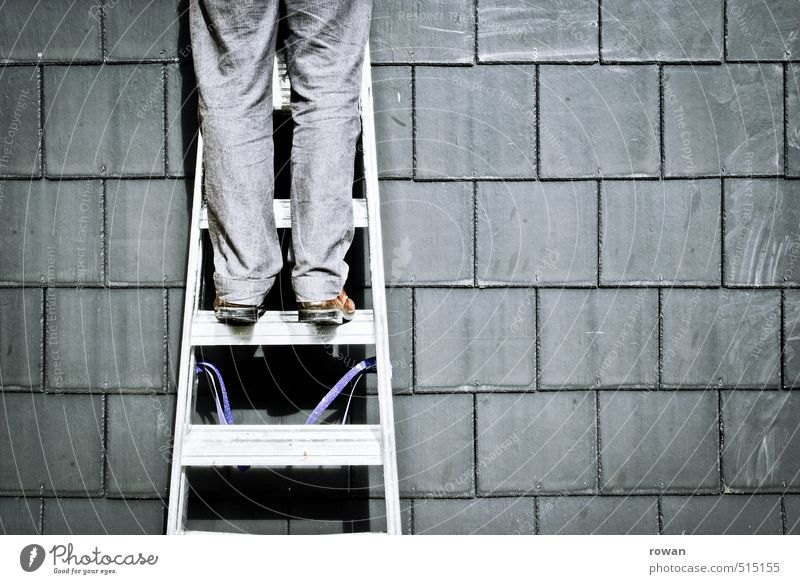 climber Human being Masculine Young man Youth (Young adults) Gray Ladder Go up Climbing Roof Repair Craftsperson Upward Rung Wall (building) Construction worker