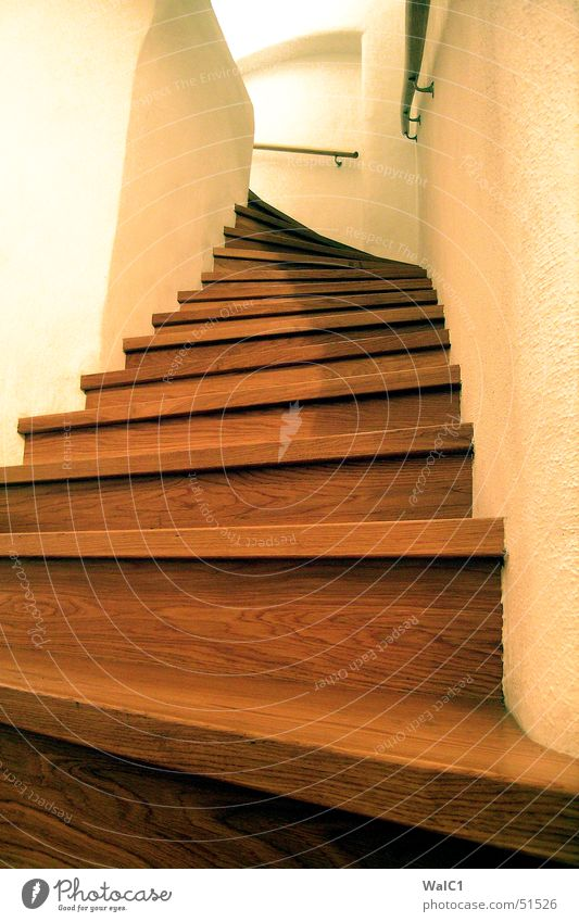 Wall (building) Wood Wall (barrier) Stairs Shows Curve Upward Ladder Handrail Bend Arch Steep Wood grain Joiner