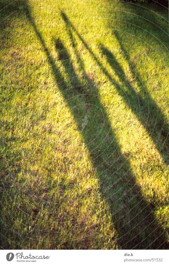 Human being Green Sun Summer Joy Yellow Meadow Graffiti Freedom Movement Grass Jump Happy Bright 2 Dance