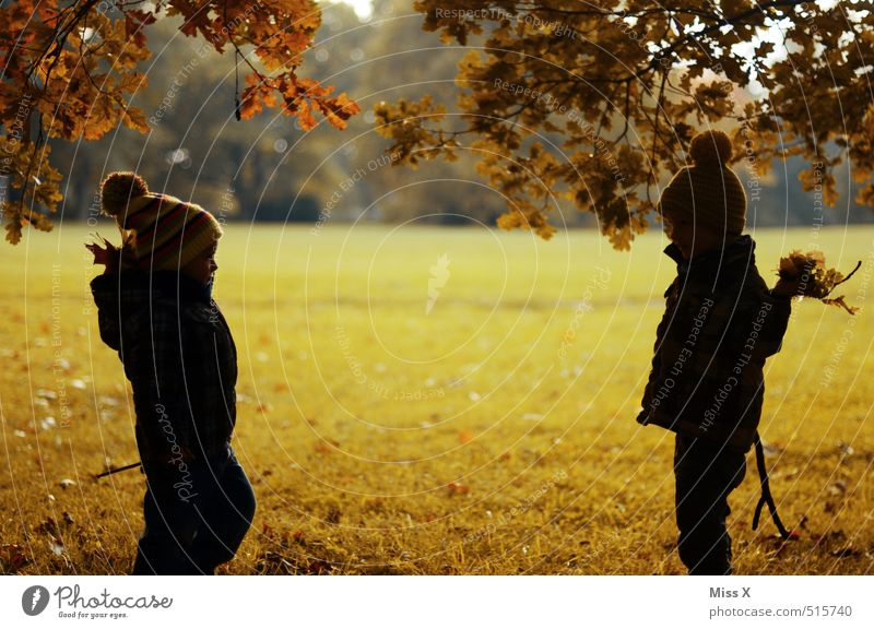 Human being Child Tree Joy Leaf Emotions Autumn Playing Friendship Moody Park Leisure and hobbies Infancy Happiness Cute Joie de vivre (Vitality)