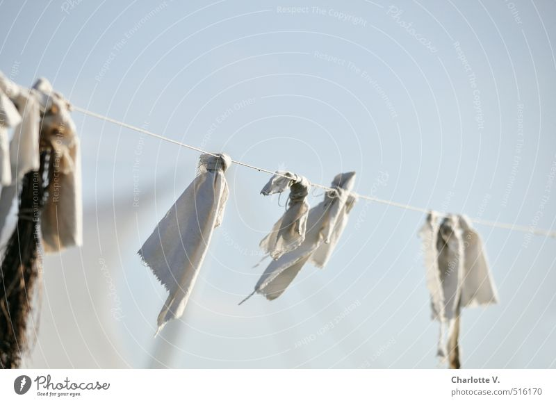 rag in the wind Decoration Hang To swing Esthetic Authentic Simple Elegant Happiness Together Bright Uniqueness Cold Broken Above Dry Soft Blue Gray White Calm