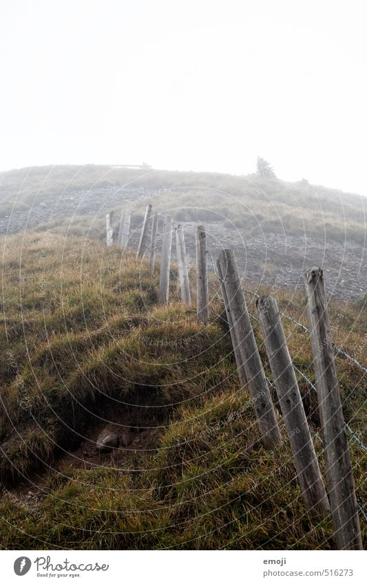 ascent Environment Nature Landscape Autumn Bad weather Fog Grass Field Hill Creepy Natural Gray Green Fence Colour photo Subdued colour Exterior shot Deserted