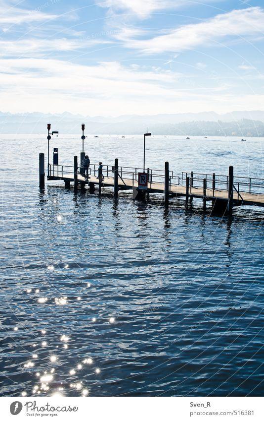 Lake Zurich Sun Landscape Sunlight Lake zurich Water Swimming & Bathing Glittering Illuminate Footbridge Colour photo Exterior shot Copy Space bottom Day