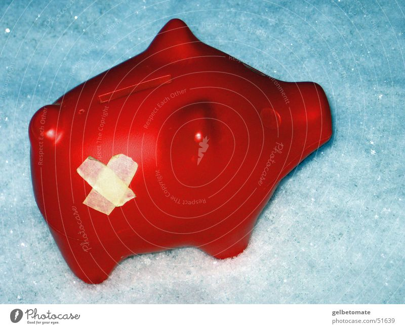 Red Winter Snow Money box