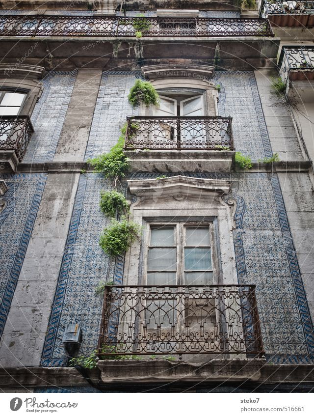 Balcony in Lisbon Facade Window Old Poverty Authentic Historic Town Blue Gray Green Tile Derelict Colour photo Exterior shot Deserted