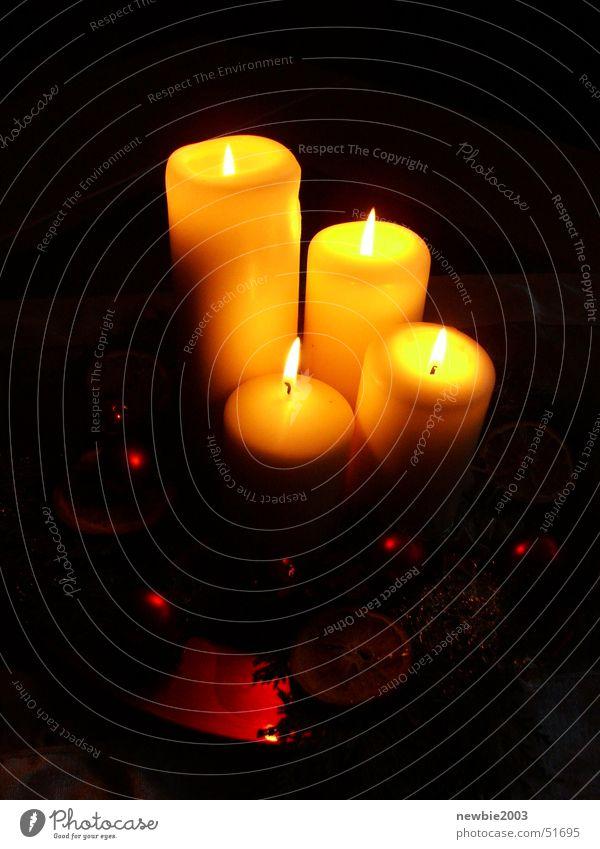 Dark Warmth Candle Physics Christmas wreath