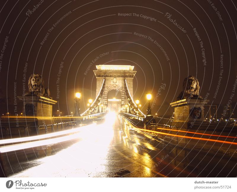 Vacation & Travel Winter Street Dark Cold Snow Car Lamp Bright Wait Wet Trip Speed Bridge Gate Stress