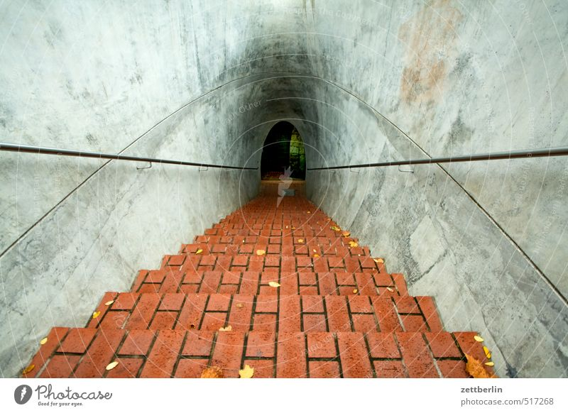 Something in Dresden Hiking Living or residing Autumn Manmade structures Architecture Stairs Adventure Target wallroth Descent Banister Brick Cave Tunnel