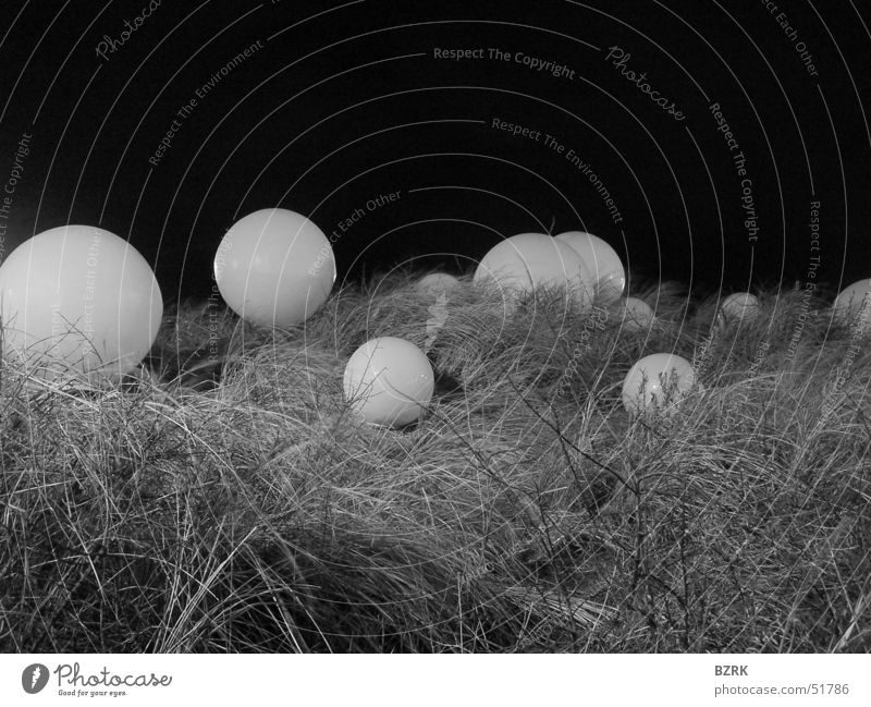 globes in the grass black & white spheres balls Ball Sphere