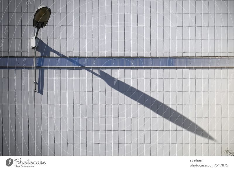 shadow growth Wall (barrier) Wall (building) Gloomy Blue Gray Lamp Wall light Tile Shadow Part of the plant Stalk Diagonal Targeted Subdued colour Exterior shot
