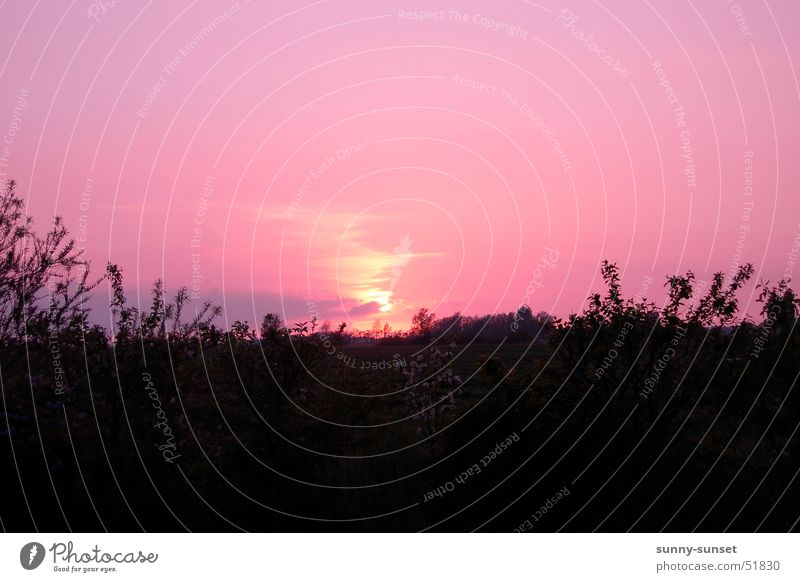 East Frisian Sunset East Frisland Summer