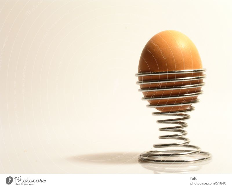 an egg Egg cup Curved Brown Raw Nutrition Breakfast Metal chrome Shadow Food Structures and shapes