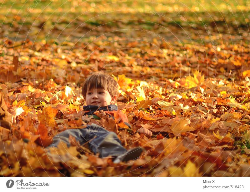 Human being Child Nature Joy Leaf Meadow Emotions Autumn Playing Garden Lie Moody Park Leisure and hobbies Contentment Infancy