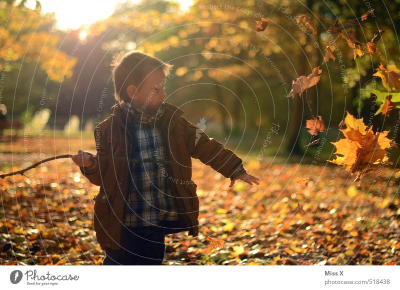 Human being Child Joy Leaf Forest Meadow Autumn Boy (child) Playing Garden Moody Park Leisure and hobbies Infancy Happiness Joie de vivre (Vitality)