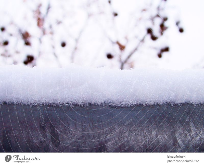 Winter Cold Snow Metal Branch Steel Handrail Alpina snowcap