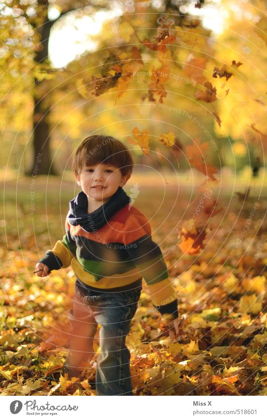 Human being Child Joy Leaf Emotions Autumn Playing Laughter Moody Park Leisure and hobbies Infancy Beautiful weather Cute Toddler Autumn leaves