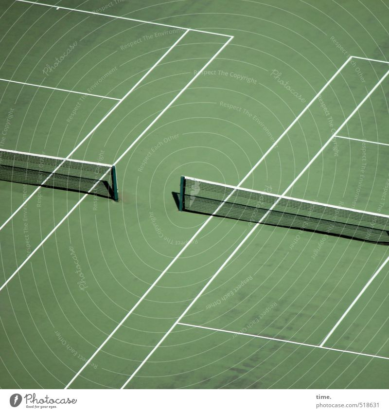 Lawn's dangerous. Tennis elbow. Sports Fitness Sports Training Ball sports Sporting Complex Tennis court Net Meadow Line Stripe Green White Relationship