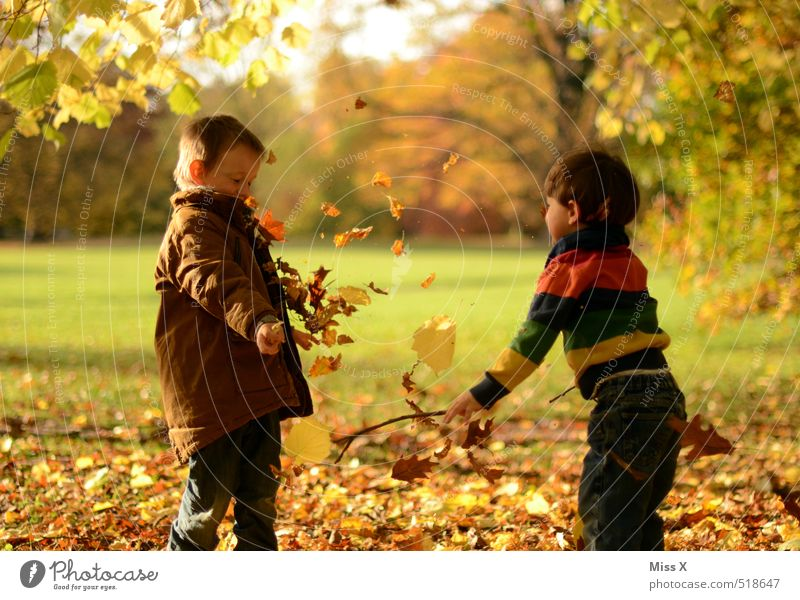 Human being Child Nature Joy Leaf Emotions Autumn Funny Playing Friendship Moody Family & Relations Park Leisure and hobbies Infancy Beautiful weather