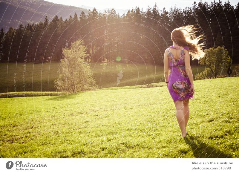 Woman Youth (Young adults) Beautiful Summer Relaxation Young woman Landscape Forest Adults Life Love Meadow Feminine Happy Wind Contentment