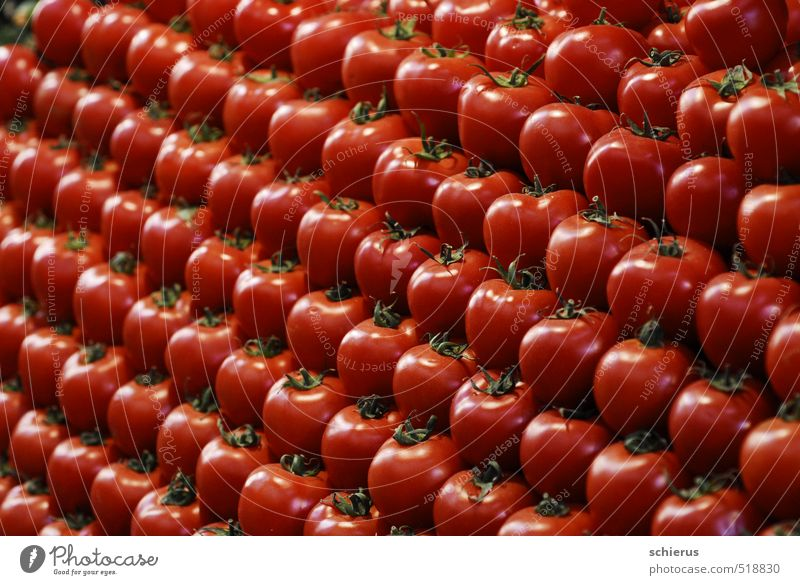tomatoes Food Vegetable Nutrition Organic produce Vegetarian diet Healthy Healthy Eating Life Plant Agricultural crop Fresh Delicious Sweet Red Markets