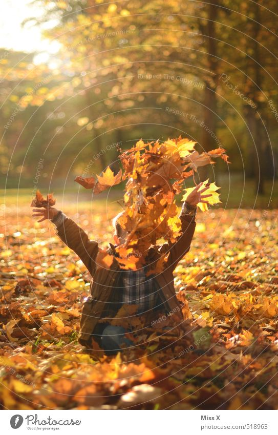 Human being Child Nature Joy Leaf Forest Emotions Autumn Funny Playing Happy Garden Moody Flying Park Leisure and hobbies