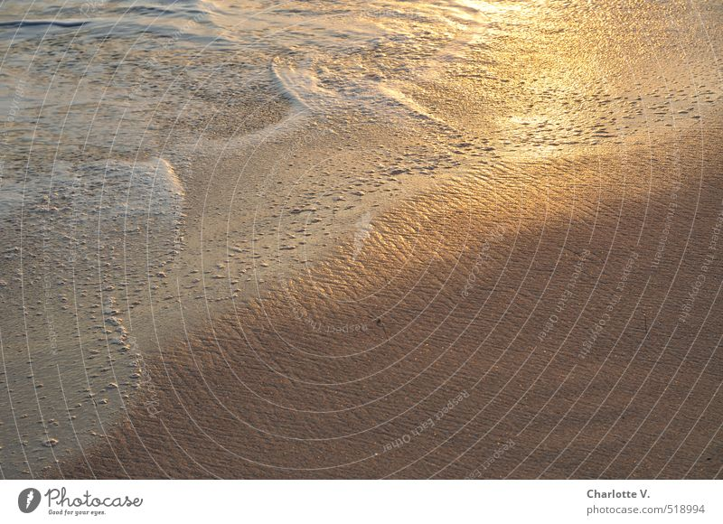 Beautiful White Water Ocean Beach Warmth Movement Gray Sand Glittering Gold Illuminate Beautiful weather Island Wet Esthetic