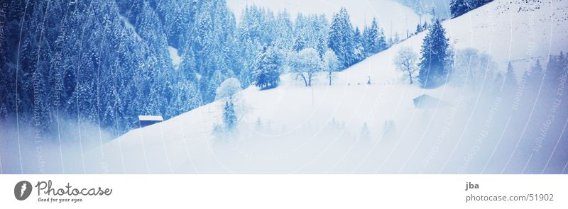 in winter Winter Fog Fir tree Alpine hut Slope Snow White Saanenland Rellerli Abländschen snowy Blue