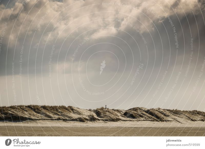 solitary Human being Feminine Young woman Youth (Young adults) 1 Environment Nature Landscape Sand Sky Clouds Grass Marram grass Beach North Sea Dune