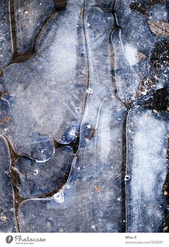 ice age Air Water Winter Ice Frost Snow Cold Puddle Frozen Air bubble Surface of water Black & white photo Subdued colour Exterior shot Close-up Detail Pattern