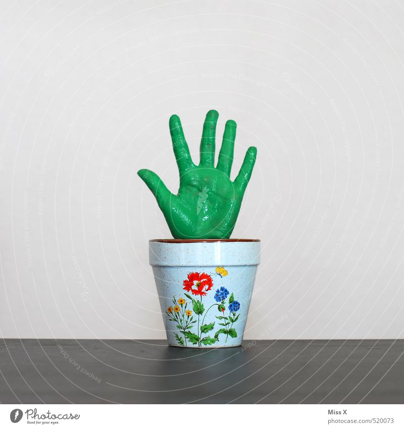 Green thumb, index finger, middle finger... Hand Fingers Plant Leaf Pot plant Exotic Growth Funny Bizarre Symbols and metaphors Flowerpot Gardener Houseplant