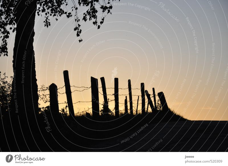 Fencing Sunset Cloudless sky Horizon Sunrise Lanes & trails Dream Esthetic Calm Testing & Control Nature Planning Safety Colour photo Subdued colour