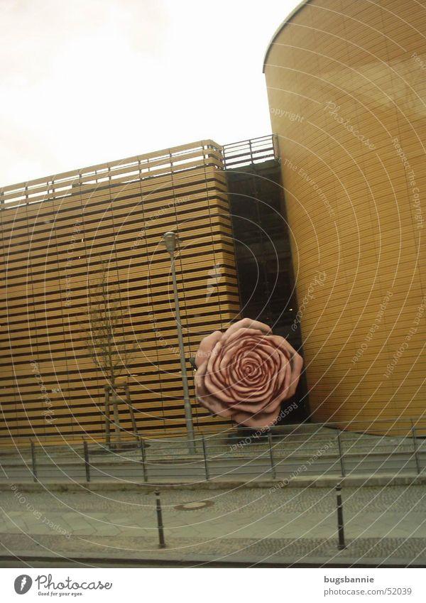 Street Berlin Wall (building) Art Pink Rose Statue