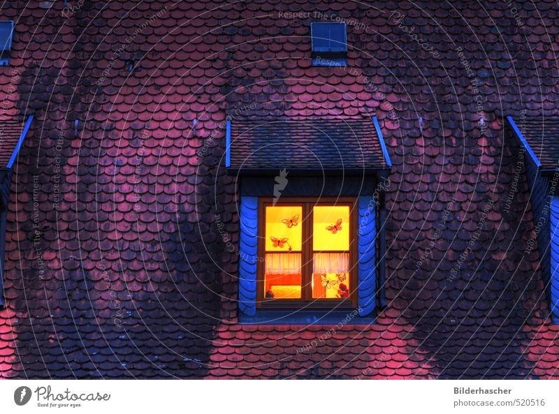 nightlight Skylight Window Night Light House (Residential Structure) Roof Mansard Roofing tile Dark Room Twilight Tiled roof Slate Night light Wooden window